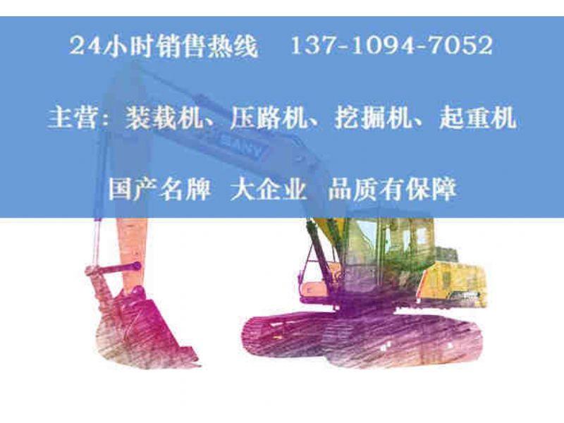 庆阳三一挖掘机型号265经销商