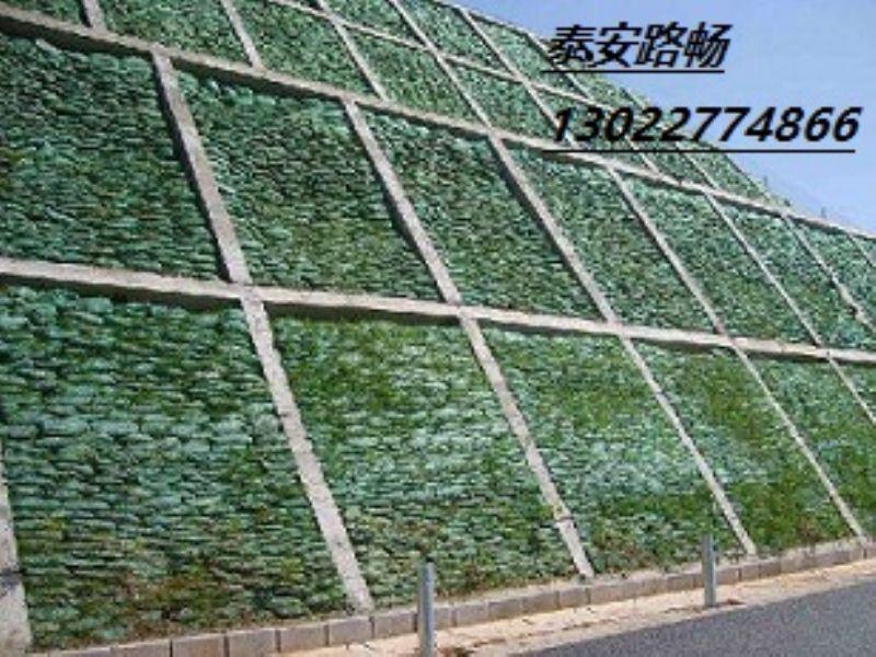 三维植被网3