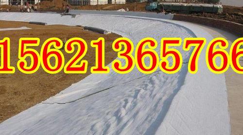 欢迎光临+黄石土工布有限公司(15621365766)
