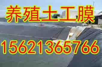 欢迎光临=湛江复合土工膜股份有限公司+=湛江