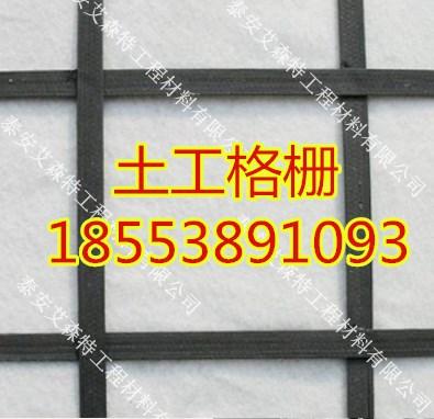 欢迎光临百色钢塑土工格栅的价格