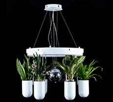 6头圆形组合式氧生吊灯