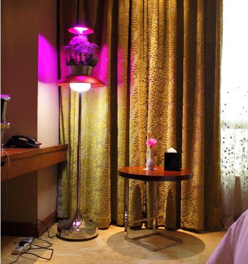 五星酒店植物氧生落地灯
